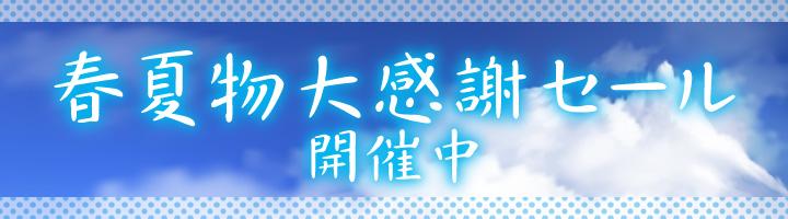 bn_2020-spring_sale